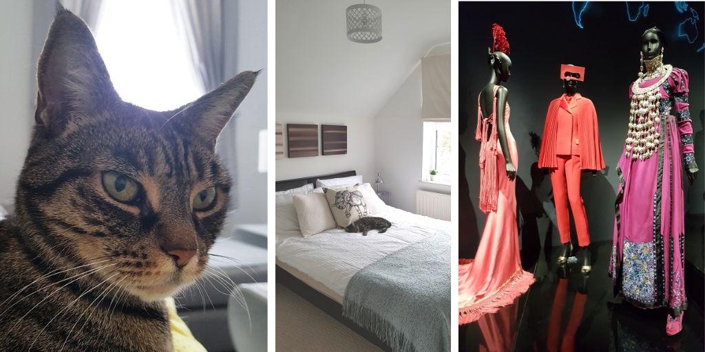 Katzensitten und Dior Ausstellung in London
